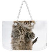 Boxing Kitten Weekender Tote Bag