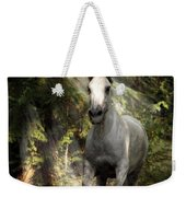 Breaking Dawn Gallop Weekender Tote Bag