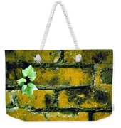 Brick Ivy Weekender Tote Bag