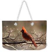 Bright Bold - Cardinal Weekender Tote Bag