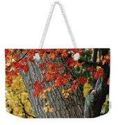 Bright Red Maple Leaves Against An Oak Weekender Tote Bag