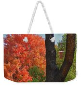 Brillant Weekender Tote Bag