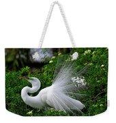 Brilliant Feathers Weekender Tote Bag
