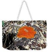 Brilliant Orange Lichen Weekender Tote Bag