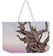 Bristlecone Pine - Early Morning - 1 Weekender Tote Bag