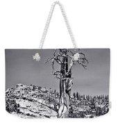 Bristlecone Pine - High Sierra Weekender Tote Bag