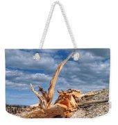 Bristlecone Pine In Repose Weekender Tote Bag
