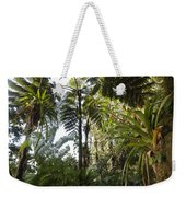 Bromeliad And Tree Ferns  Weekender Tote Bag by Cyril Ruoso