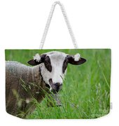Brown And White Sheep Weekender Tote Bag