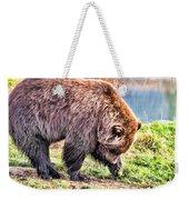 Brown Bear 201 Weekender Tote Bag