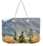 Brown Bear 207 Weekender Tote Bag