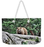 Brown Bear 209 Weekender Tote Bag
