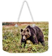 Brown Bear 210 Weekender Tote Bag