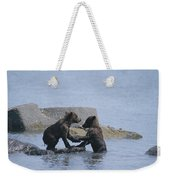 Brown Bear Cubs Playing On A Rocky Weekender Tote Bag