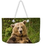 Brown Bear Ursus Arctos, Asturias, Spain Weekender Tote Bag