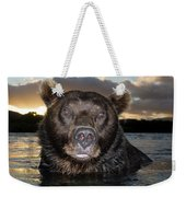 Brown Bear Ursus Arctos In River Weekender Tote Bag