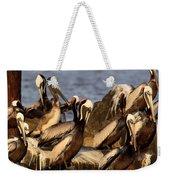 Brown Pelicans - Beauty Of Sand Island Weekender Tote Bag