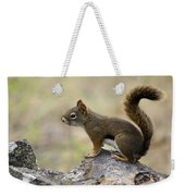 Brown Squirrel In Spokane Weekender Tote Bag