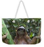 Brown Throated Three Toed Sloth Male Weekender Tote Bag