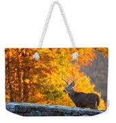 Buck In The Fall 06 Weekender Tote Bag