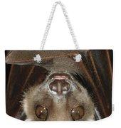 Buettikofers Epauletted Bat Epomops Weekender Tote Bag