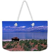 Buffalo And The Great Salt Lake Weekender Tote Bag