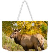 Bull Elk Autum Portrait Weekender Tote Bag