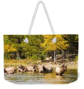 Bull Elk Watching Over Herd 5 Weekender Tote Bag