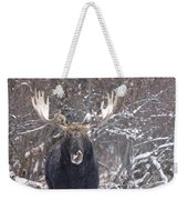 Bull Moose In Winter Weekender Tote Bag