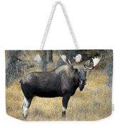 Bull Moose, Peter Lougheed Provincial Weekender Tote Bag