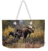Bull Tolerates Calf Weekender Tote Bag