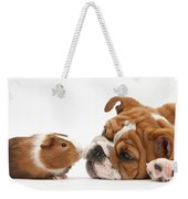 Bulldog Pup Face-to-face With Guinea Pig Weekender Tote Bag