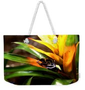 Bumble Bee Dart Frogs Weekender Tote Bag