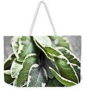 Bunch Of Fresh Sage Weekender Tote Bag by Elena Elisseeva