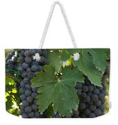 Bunches Of Sangiovese Grapes Hang Weekender Tote Bag