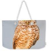 Burrowing Owl V Weekender Tote Bag