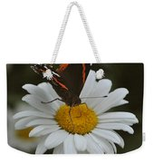 Butterfly On Shasta Daisy Weekender Tote Bag