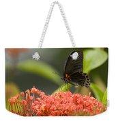 Butterfly Papilio Memnon Feeding Weekender Tote Bag