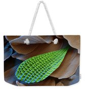 Butterfly Wing Scale Sem Weekender Tote Bag