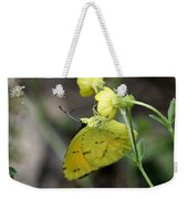 Butterfly - Yellow Sulphur On Yellow Weekender Tote Bag
