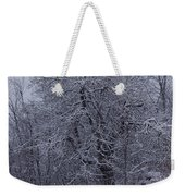 By The Old Well Weekender Tote Bag