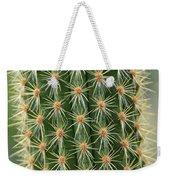 Cactus 19 Weekender Tote Bag