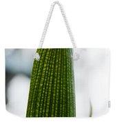 Cactus 28 Weekender Tote Bag