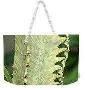 Cactus 60 Weekender Tote Bag