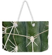 Cactus 61 Weekender Tote Bag