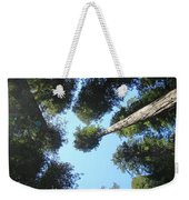 California Redwood Trees Fine Art Prints Forest Weekender Tote Bag