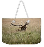 Call Of The Wild 1 Weekender Tote Bag