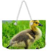 Canada Gosling Weekender Tote Bag