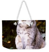 Canada Lynx With Paw Up   Weekender Tote Bag