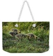 Canadian Goose Gosslings Weekender Tote Bag